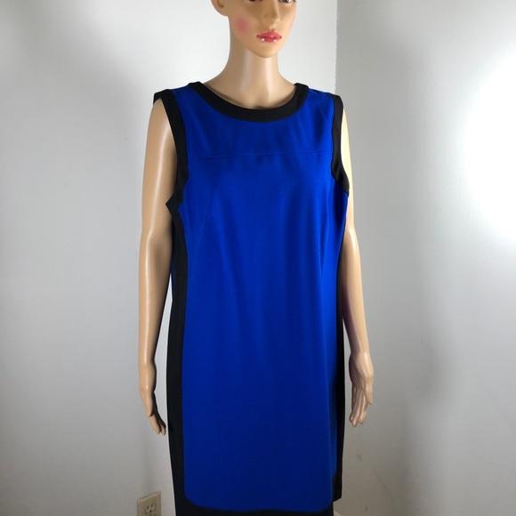 Lauren Ralph Lauren Dresses & Skirts - Lauren Ralph Lauren Dress Sheath Sleeveless Hidden